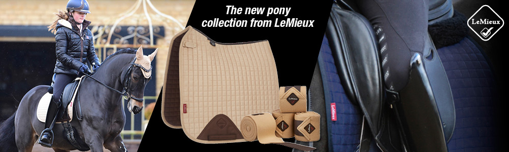 Image result for lemieux pony collection